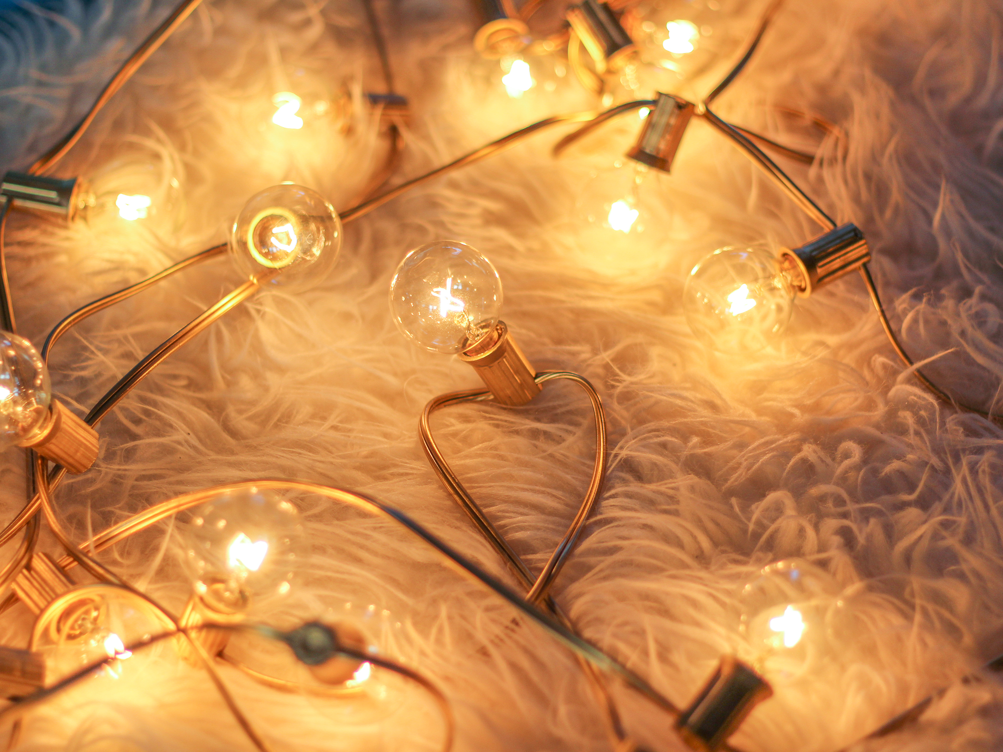 string lights with a gold cord