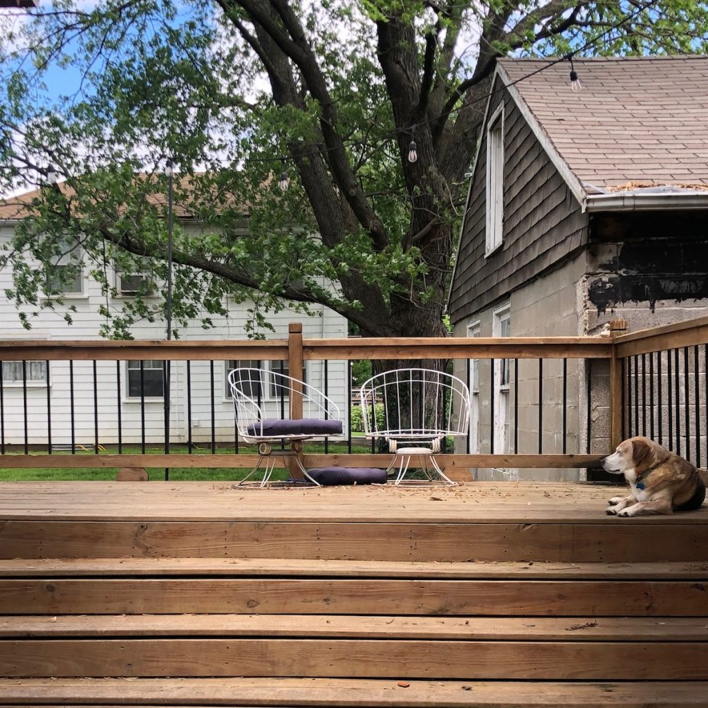 Plain back deck with dog.